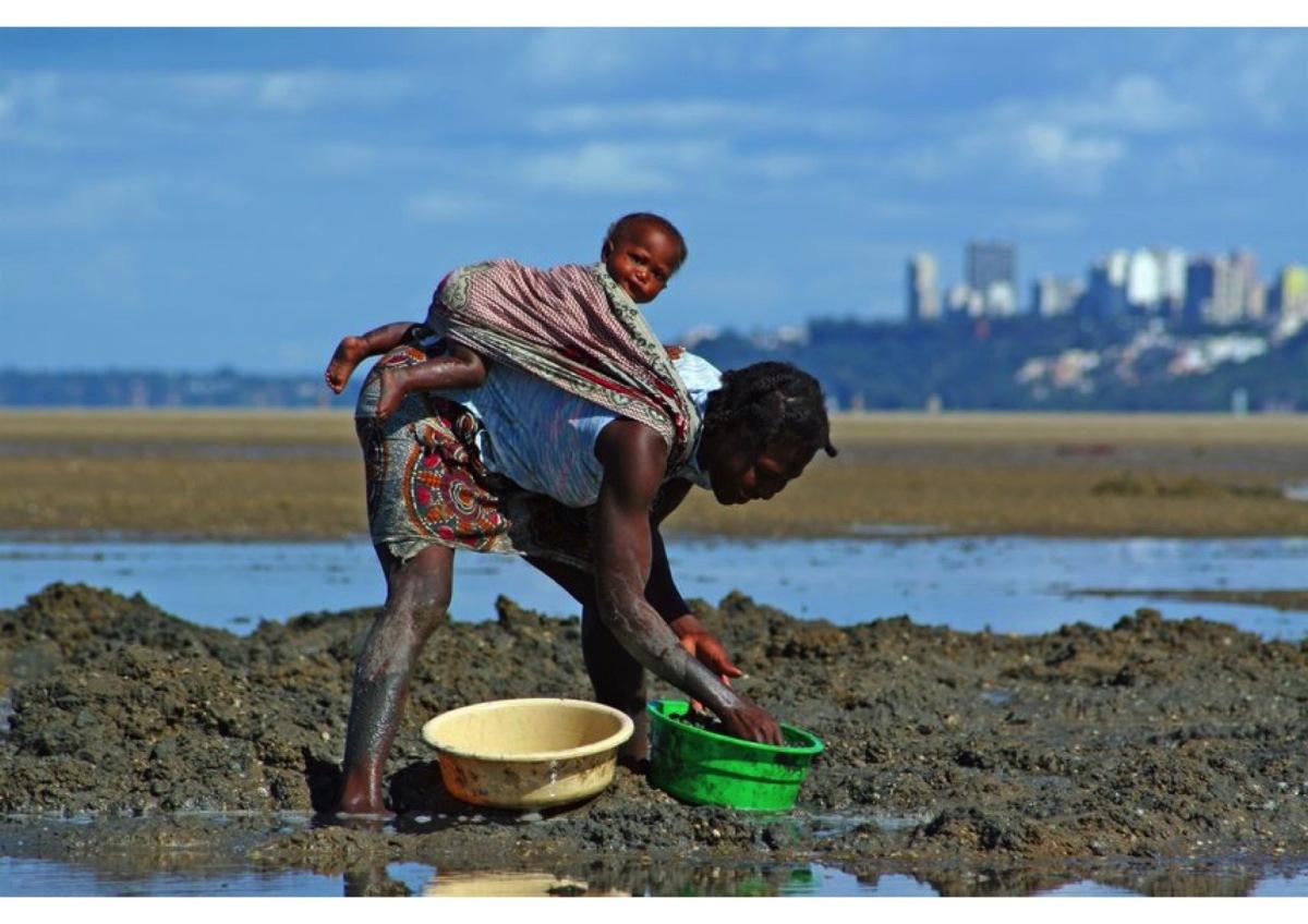 Random Mozambique (8).jpg
